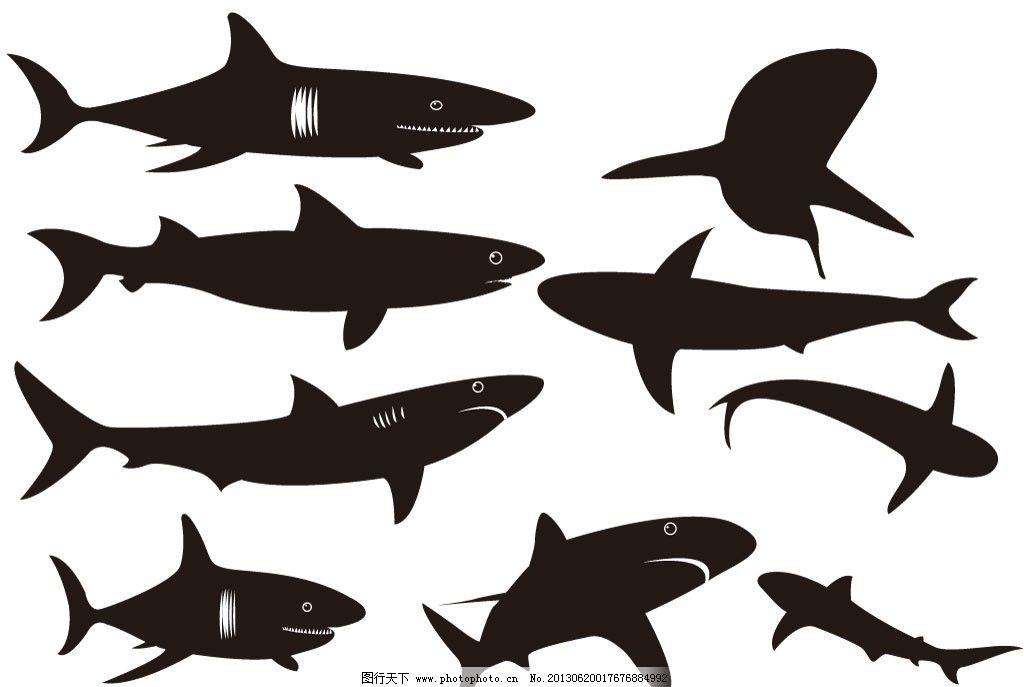 鲨鱼橡皮泥手工步骤