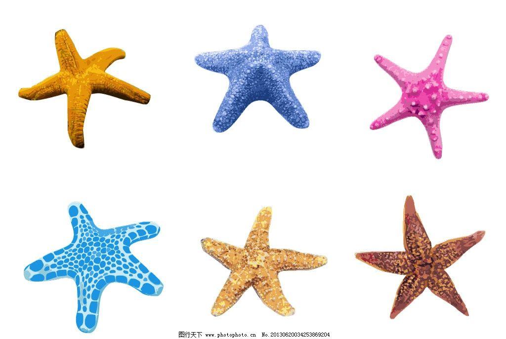 小海星 海星简笔画 热带海洋 热带海洋生物 可爱动物 五彩海星 星星