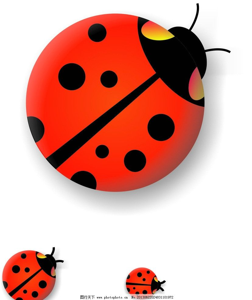 瓢虫的绘画步骤