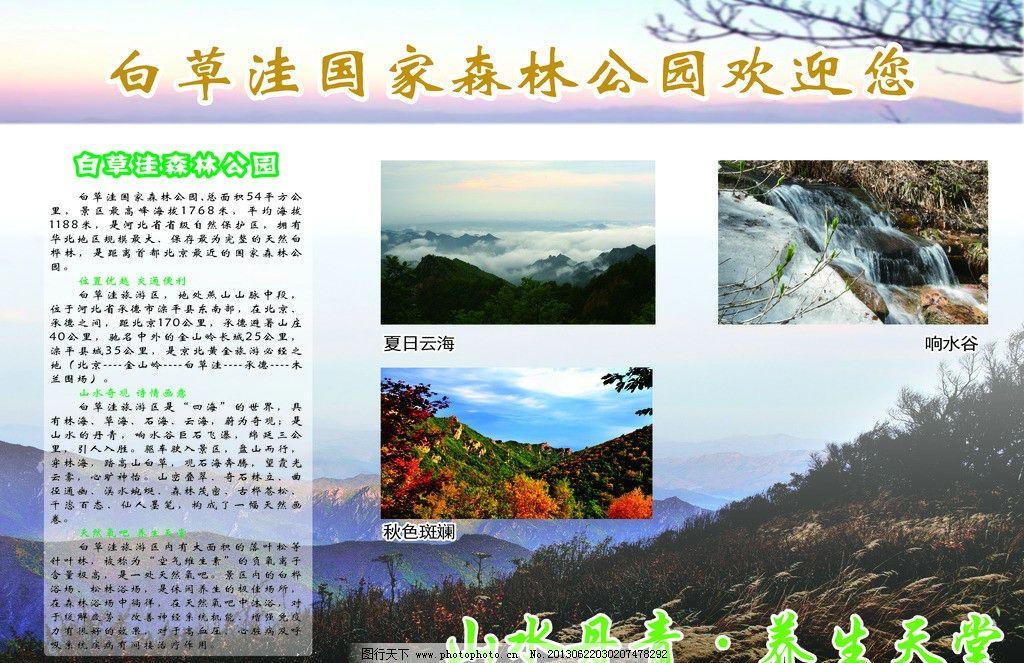 白草洼国家森林公园图片图片