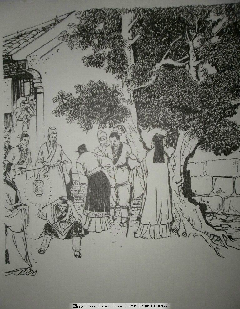 木棉花素描图片