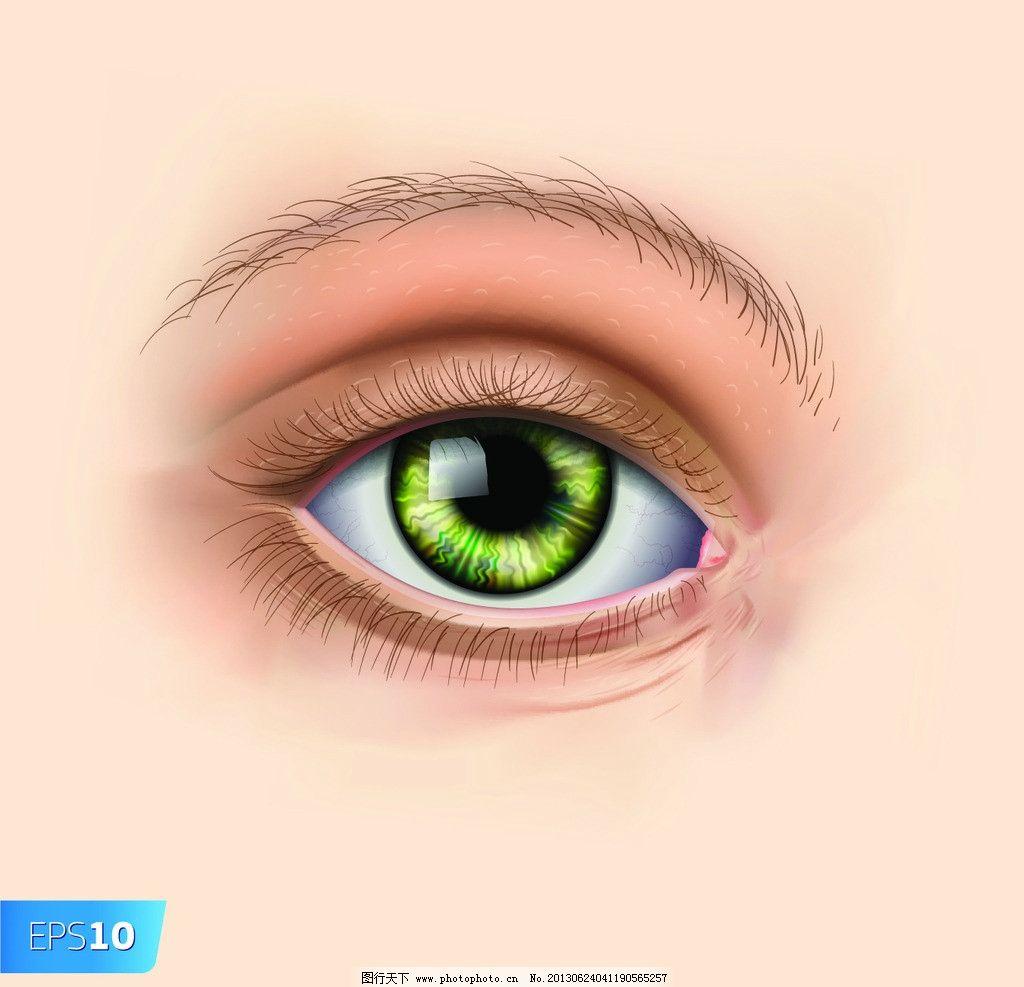 美女眼睛 眼睛 眼珠 明亮 瞳孔 心灵窗口 眼眉 动漫 动画 动漫人物 手