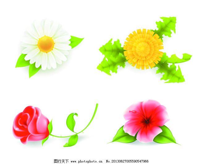 春天 淡雅 花 花草 花朵 花纹 菊花 绿色 玫瑰 玫瑰花 菊花 玫瑰 花朵