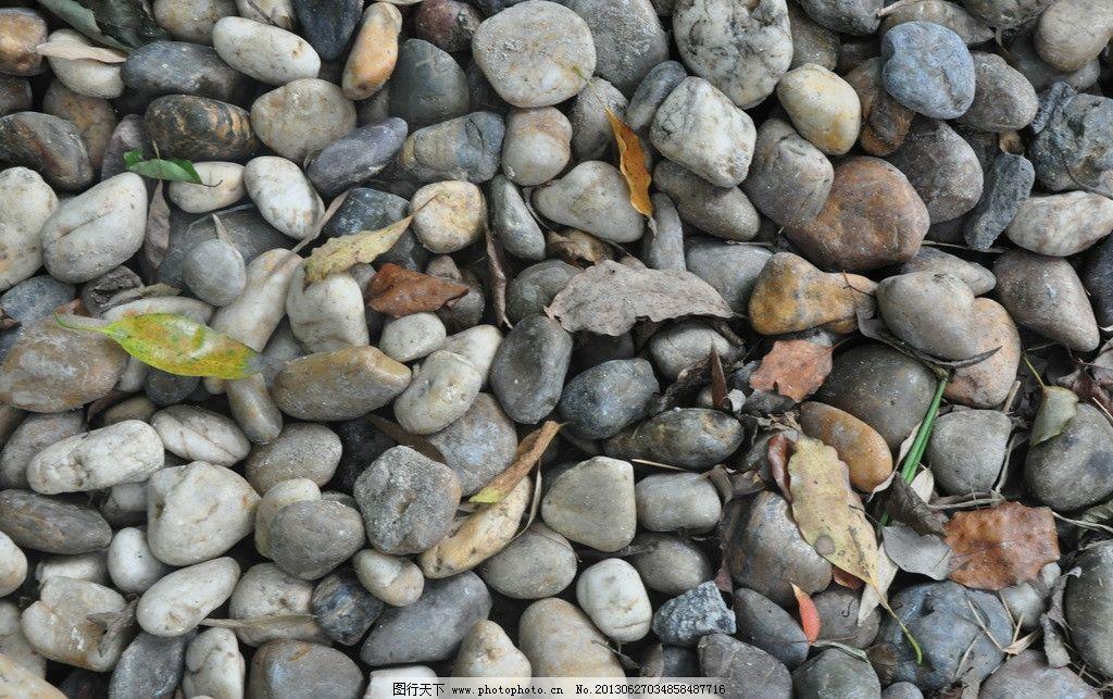 石头 石子 圆石头 枯叶 扁石头 自然风景 自然景观 摄影 300dpi jpg